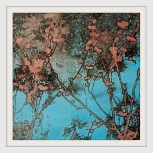 05-20cmx20cm. Turkey, Branches Like Silk. Photocollage.