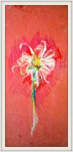 2-15cmx 30cm.Daisy. Coloured Pencil, Pink Paper.