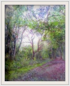 33-Wood Path. Nfs